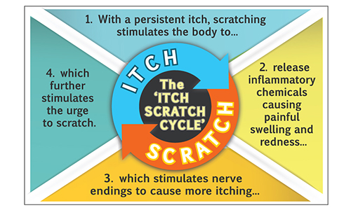 The dreaded Itch-Scratch Cycle